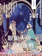 驭驼人与王子的夜晚